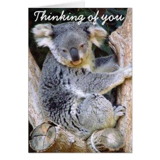 Koala Bear Love_ Greeting Card