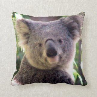 Koala Bear love_ Cushion