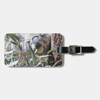 Koala bear luggage tag