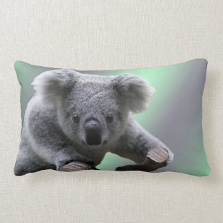 Koala Bear Lumbar Cushion