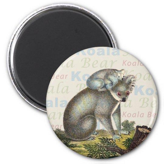 Koala Bear Magnet