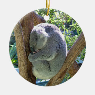 Koala Bear Round Ceramic Decoration