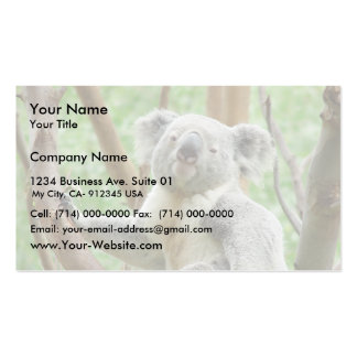 Koala Bear Sitting On The Tree At Perth Zoo Pack Of Standard Business Cards