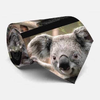 Koala Bear Tie