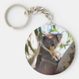 Koala Bears Aussi Outback Destiny Nature Basic Round Button Key Ring