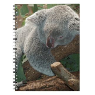 Koala Bears Aussi Outback Destiny Nature Spiral Notebook