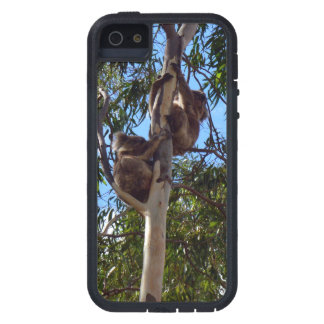 Koala-Bears_ Tough Xtreme iPhone SE + 5 Case