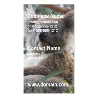 Koala Business Cards