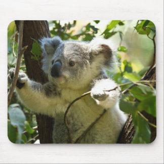 Koala cutie mouse mat
