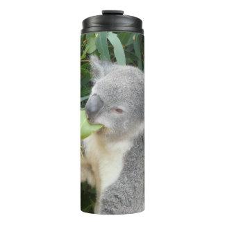 Koala Eating Gum Leaf Thermal Tumbler