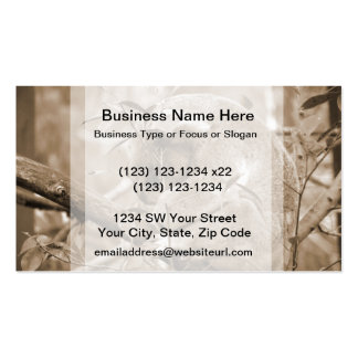 koala head down sleeping sepia c pack of standard business cards