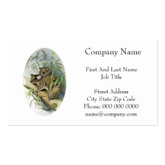 Koala Illustration Pack Of Standard Business Cards