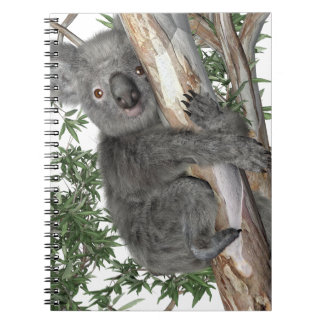 Koala in a Tree Note Books