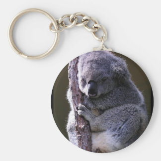 Koala in Tree Keychain