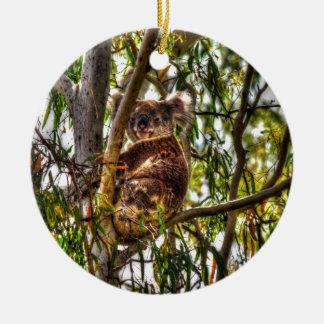 KOALA IN TREE QUEENSLAND AUSTRALIA ART EFFECTS ROUND CERAMIC DECORATION