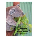 Koala Kindness Quote Postcard