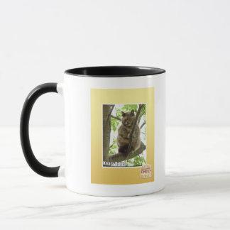Koala Kitteh Mug