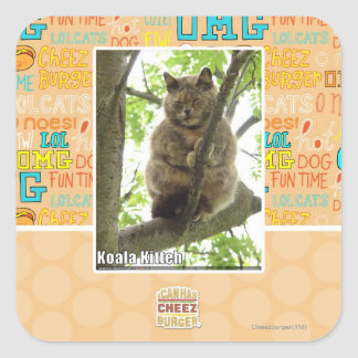 Koala Kitteh Square Sticker