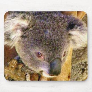 Koala Love_ Mouse Pad