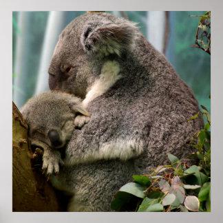 Koala Mom and New Baby Poster