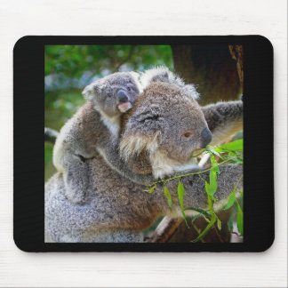Koala Mouse Mat