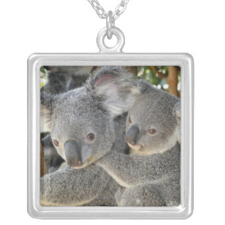 Koala Phascolarctos cinereus Queensland . Silver Plated Necklace