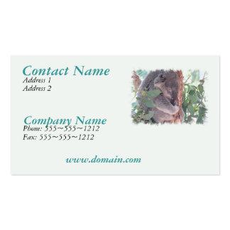 Koala Photo Busines Card Business Cards