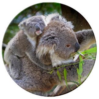 Koala Porcelain Plate