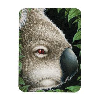 Koala Premium Magnet