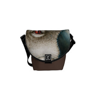 Koala Rickshaw Messenger Bag