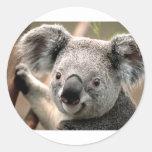 Koala Round Stickers