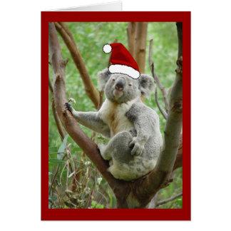 Koala Santa Christmas Card