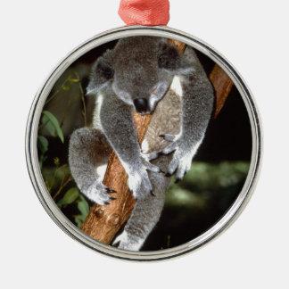 koala Silver-Colored round decoration