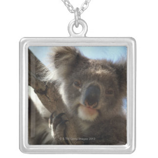 koala silver plated necklace