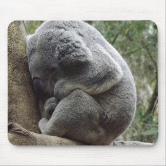 Koala Slumber Mouse Mat