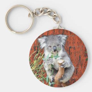 Koala Snack Time Key Ring