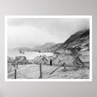 Kodiak Alaska Panorama 1909 Poster