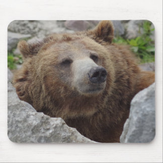 Kodiak Bear Mouse Mat