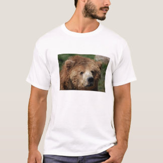 Kodiak Brown Bear Men's Shirt