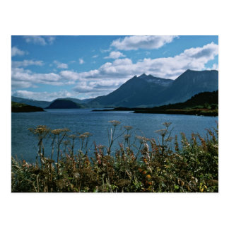 Kodiak National Wildlife Refuge Postcard