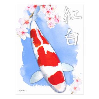 Kohaku Koi Postcard