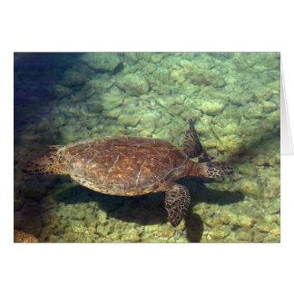 Kohala Sea Turtle Card