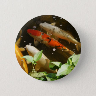 Koi button