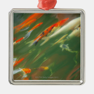 Koi carp fish swimming in a pond christmas ornament