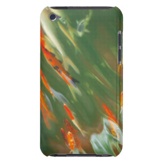 Koi carp fish swimming in a pond iPod touch case