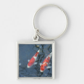Koi carp in pond, high angle view key ring