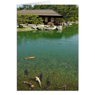 Koi carps in a Japanese garden Greeting Card