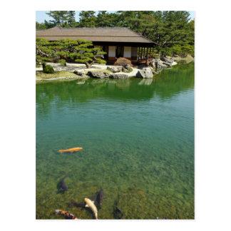 Koi carps in a Japanese garden Postcard