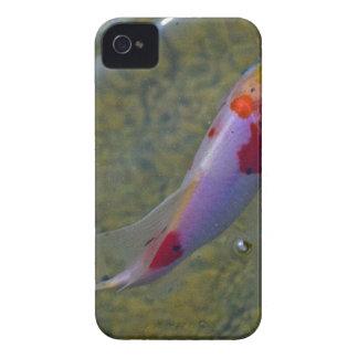 Koi iPhone 4 Covers