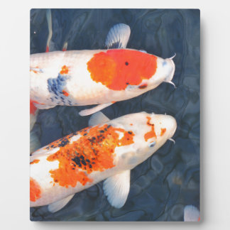 Koi fish display plaque